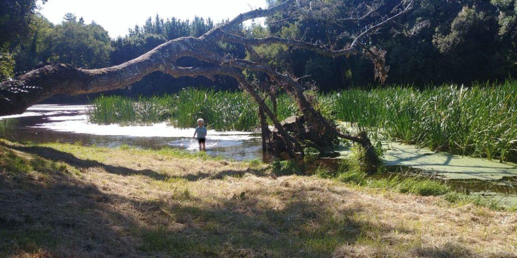 Junge spielt am Fluss